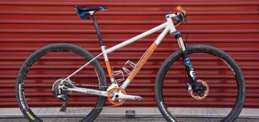 Sarif Cycle Worx custom 29 mountain bike