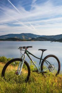 """Wolfhound Cycles hardtail 29"""" mountain bike"""