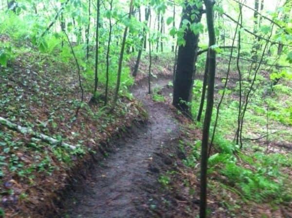 Berkshire Foothills trail