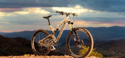 Intense Cycles Tracer T275